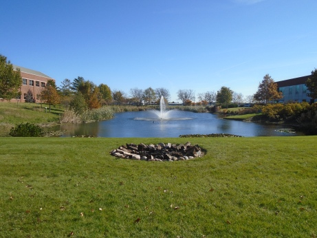 Pond with State Farm & John Deere Building on Sides.JPG
