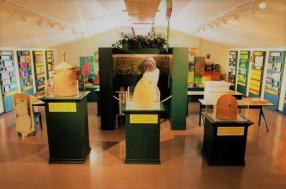 inside pollinatarium